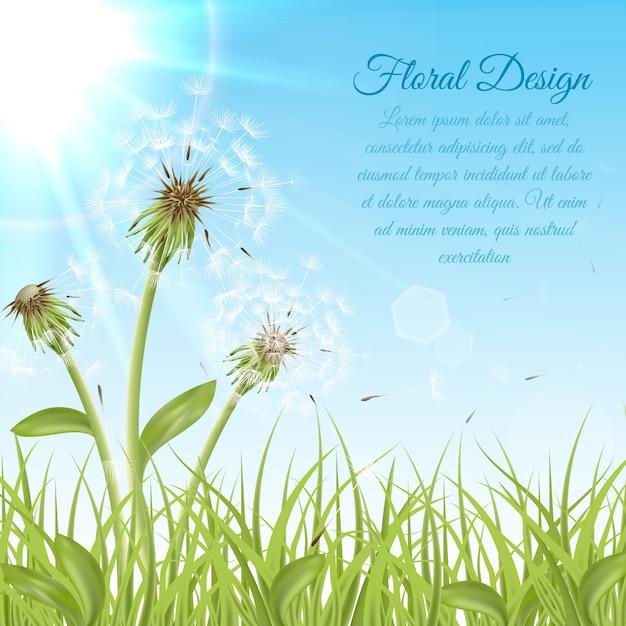 緑色の芝生に白いタンポポ Premiumベクター