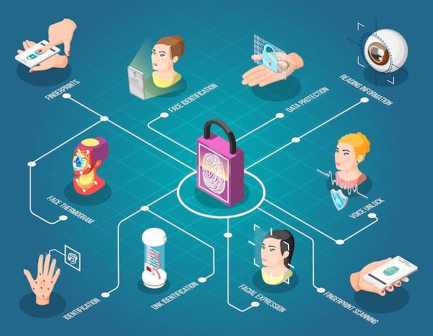 Биометрическая идентификационная блок-схема Бесплатные векторы