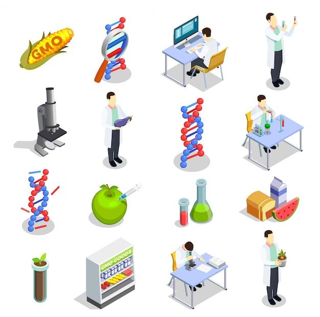 Генетически модифицированные организмы изометрические иконы Бесплатные векторы