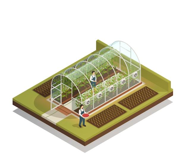 Изометрическая композиция теплицы в форме туннеля Бесплатные векторы