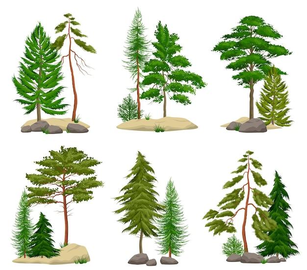 Набор реалистичных элементов соснового леса с хвойными деревьями почвы и валунов, изолированных Бесплатные векторы