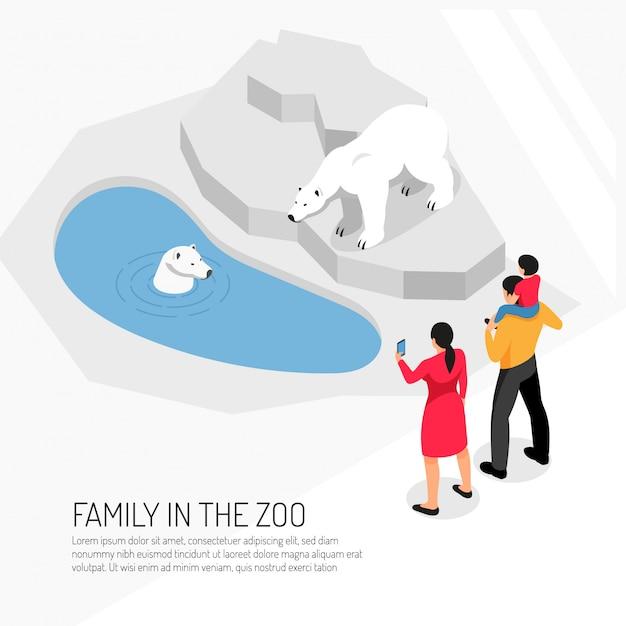 Семья в зоопарке во время просмотра белых медведей на белом изометрии Бесплатные векторы