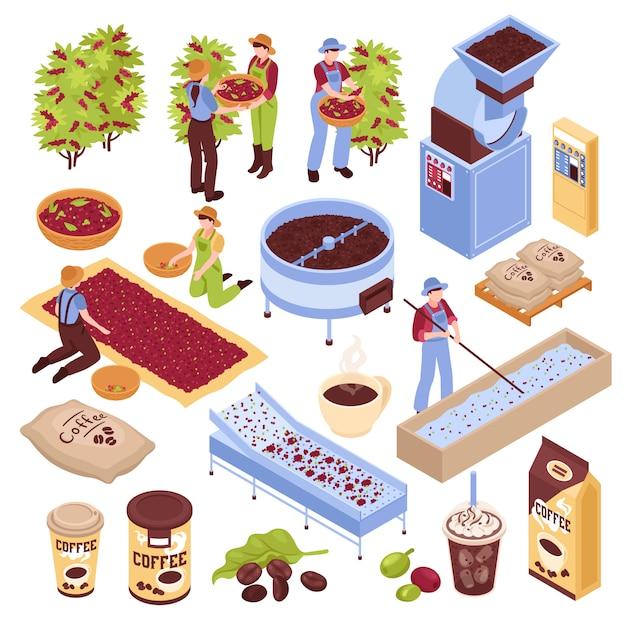 Изометрический набор для производства кофе с изолированными элементами, представляющими различные этапы производства кофейных зерен с людьми Бесплатные векторы