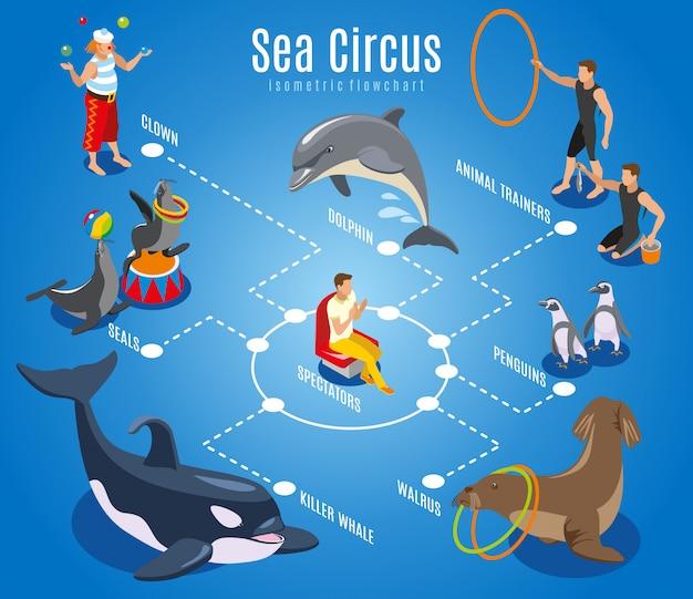 Блок-схема морского цирка с дрессировщиками зрителей тюлени морские пингвины дельфин косатка изометрическая иллюстрация Бесплатные векторы