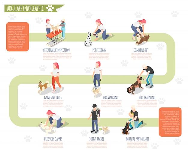 Обычная жизнь человека и его собаки изометрической инфографики с ветеринарным осмотром кормления домашних животных расчесывать обучение прогулке собаки и другие описания иллюстрации Бесплатные векторы