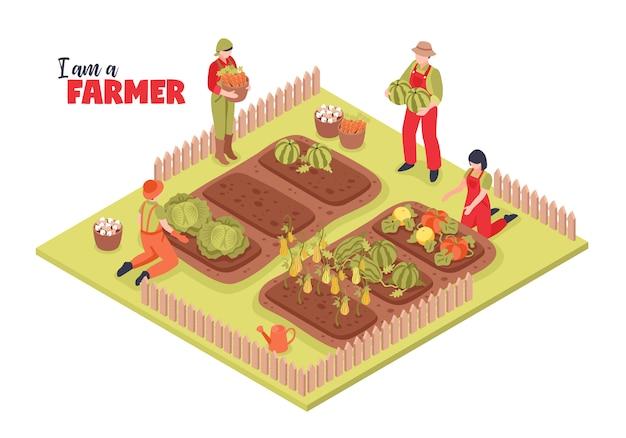 Изометрические фермы и иллюстрации фермеров Бесплатные векторы