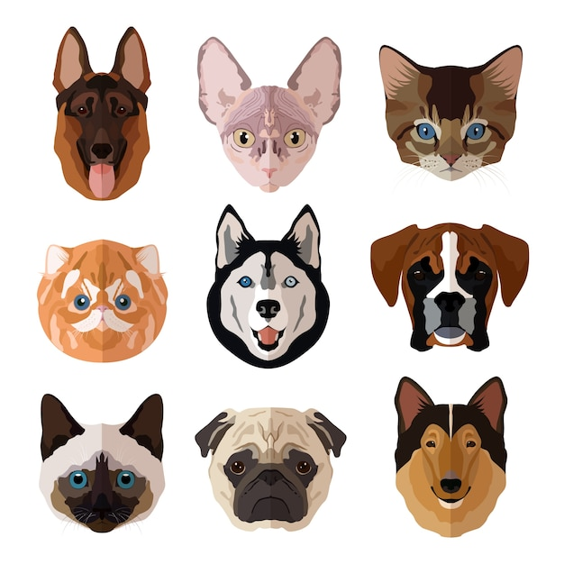 Домашние животные портрет плоские иконки с кошками собаки котята и щенки изолированных векторная иллюстрация Бесплатные векторы