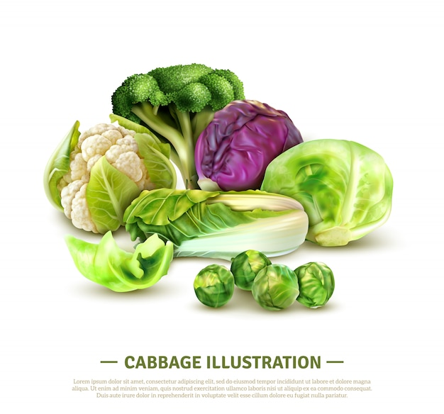 Реалистичная композиция с капустой белокочанной и капустой китайскими, капустой, брюссельской капустой, капустой и капустой Бесплатные векторы