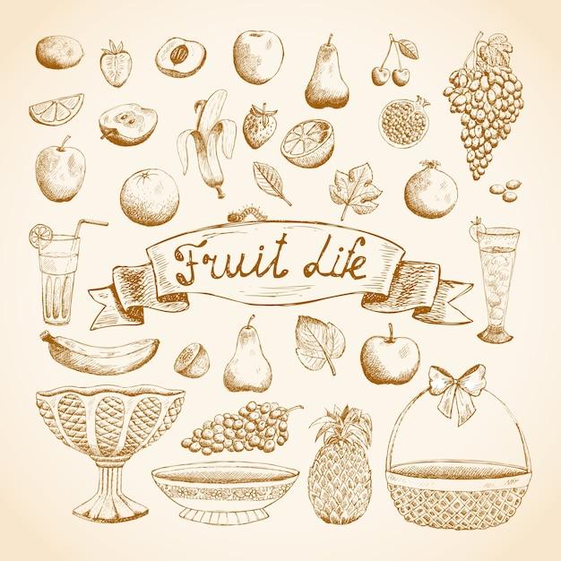 Эскизы сочных свежих фруктов Бесплатные векторы