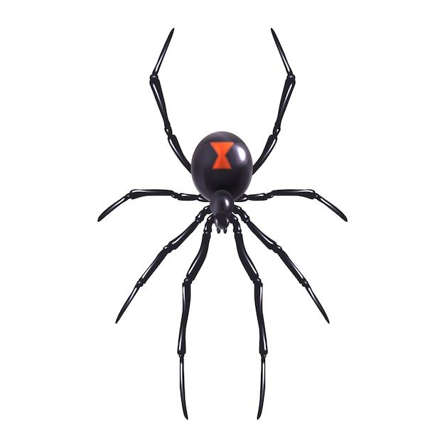 現実的なクモは孤立した 無料ベクター