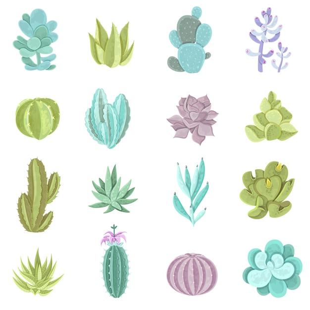 Набор кактусов кактусов Бесплатные векторы