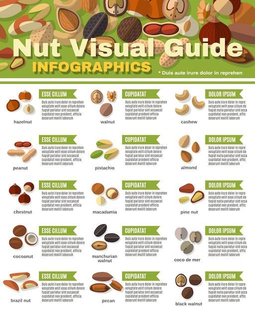 Комплект инфографики орехов Бесплатные векторы