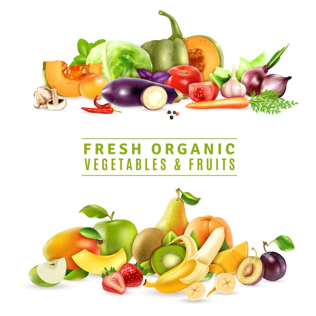 新鮮な野菜や果物のイラスト 無料ベクター