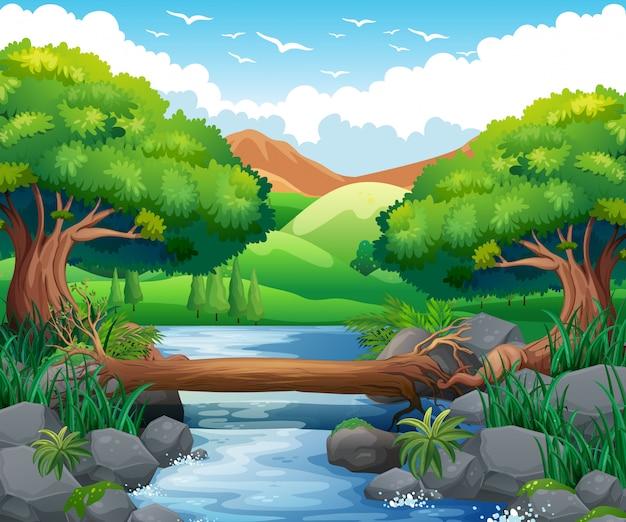森の中の川のある風景 Premiumベクター