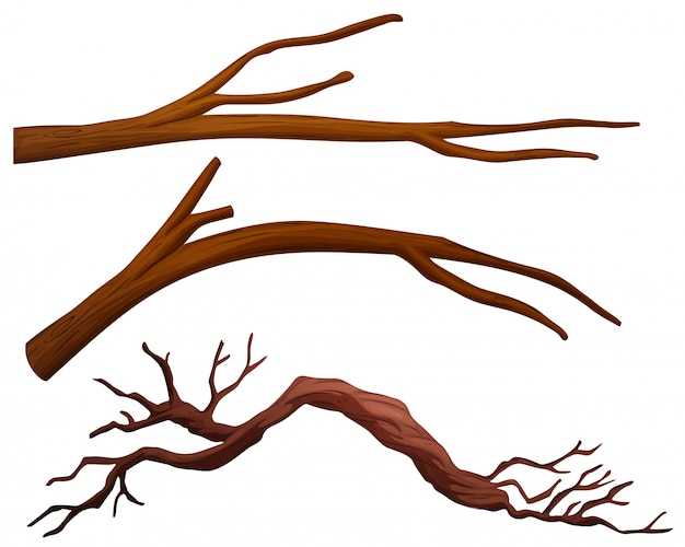 Набор ветвей дерева Бесплатные векторы