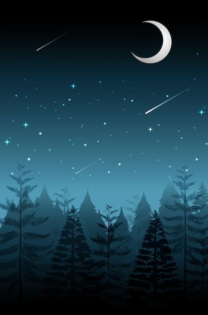 暗い夜に星を撃つ Premiumベクター