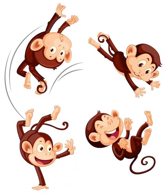 Осторожно обезьянки картинки пнг, картинки надписями про