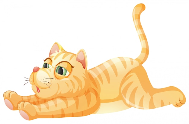 Ленькая кошка на белом фоне Бесплатные векторы