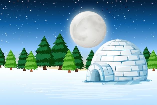 冬の夜景のイグルー Premiumベクター