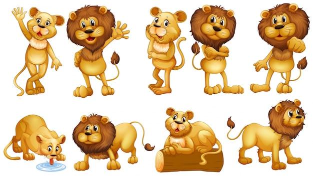 さまざまな行動のライオンイラスト 無料ベクター