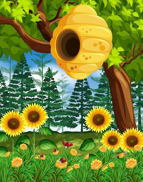 Картинки деревьев с ульем