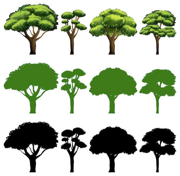 Набор из дерева разного дизайна Бесплатные векторы