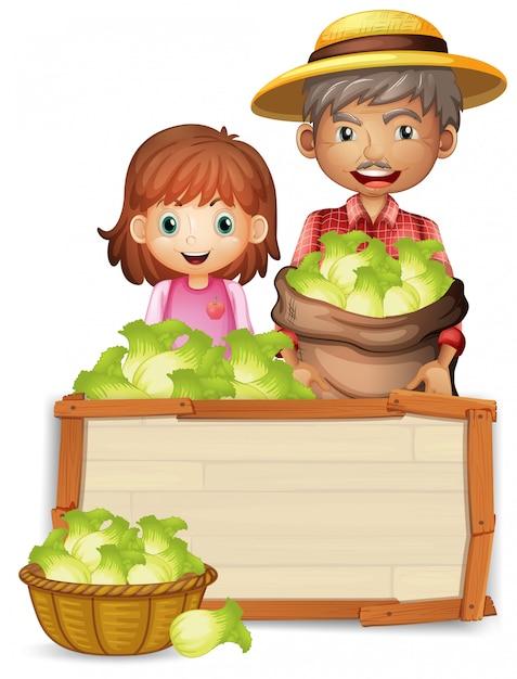 木の板に農民持株レタス Premiumベクター