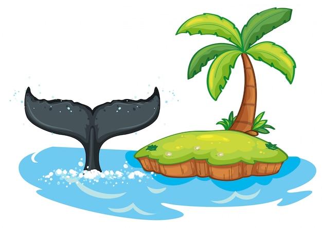 島の隣のザトウクジラの尾 Premiumベクター