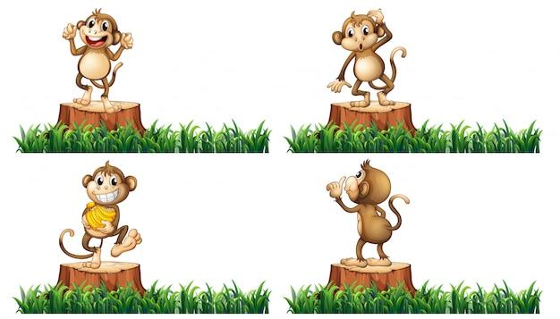 Счастливые обезьяны на пеньках Бесплатные векторы