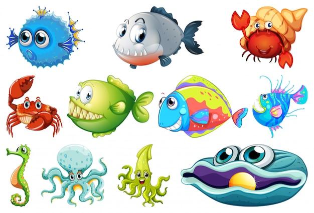 海の生き物のセット 無料ベクター