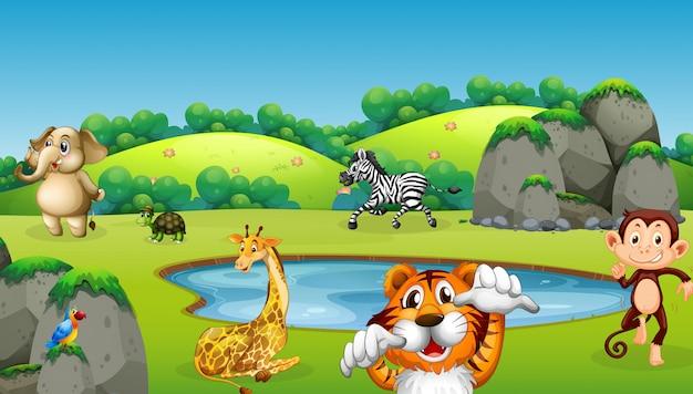 自然の中の野生動物 無料ベクター