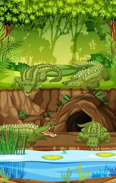 Крокодил на болоте Бесплатные векторы