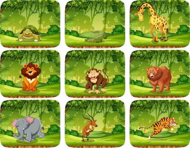 Набор животных в природе сцены Бесплатные векторы