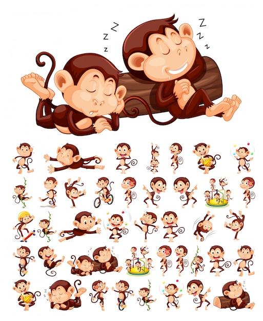猿キャラクターのセット 無料ベクター