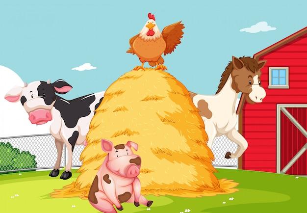農地の動物 無料ベクター