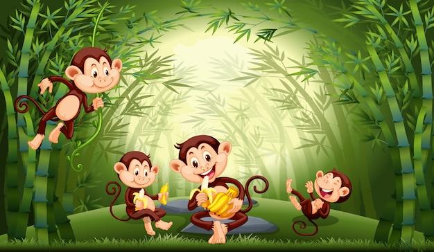 Обезьяны в бамбуковом лесу Бесплатные векторы