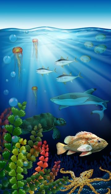 海の下に住む海の動物 Premiumベクター