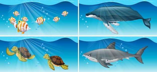海の動物たちとの水中シーン 無料ベクター