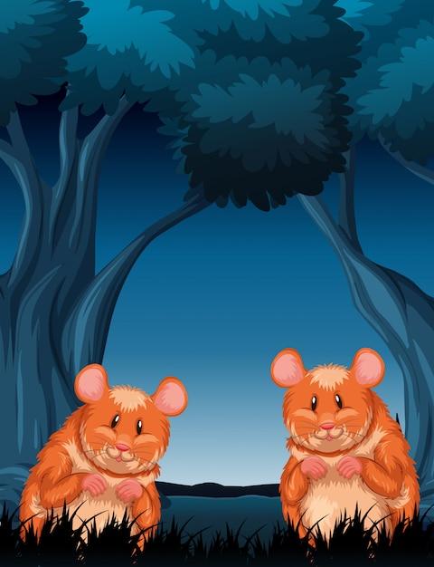 自然の木の夜景のチンパンクス 無料ベクター