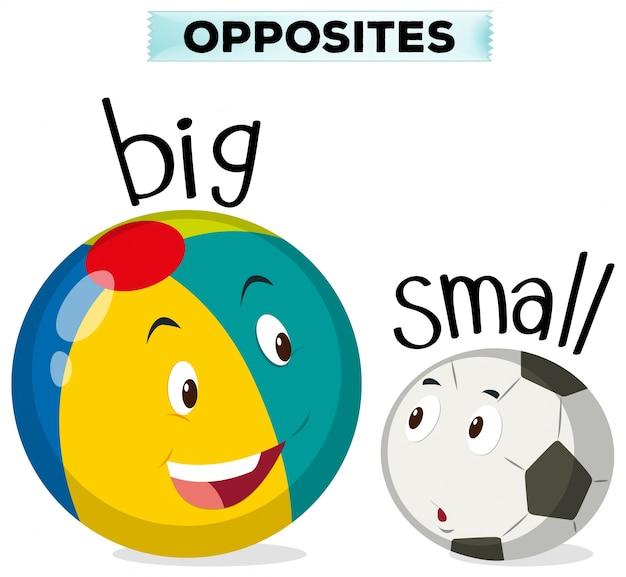 Противоположные слова для больших и малых Бесплатные векторы