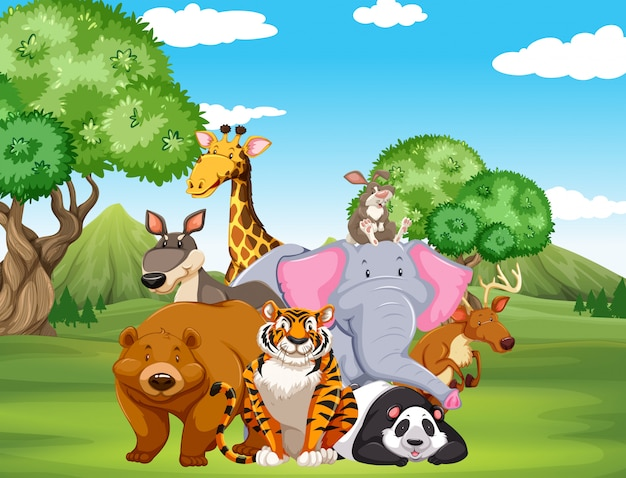 フィールド上の野生動物 無料ベクター