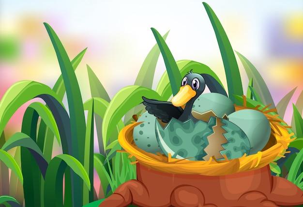 卵を孵化アヒルの庭のシーン 無料ベクター