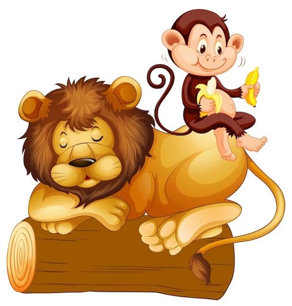 Картинка обезьяна с палкой на льва
