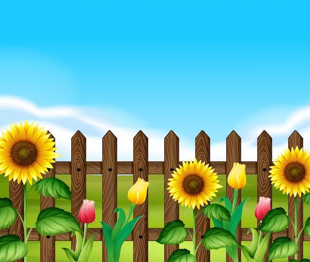庭の花と木の塀 Premiumベクター