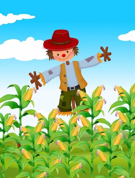 かかしのトウモロコシ畑 無料ベクター