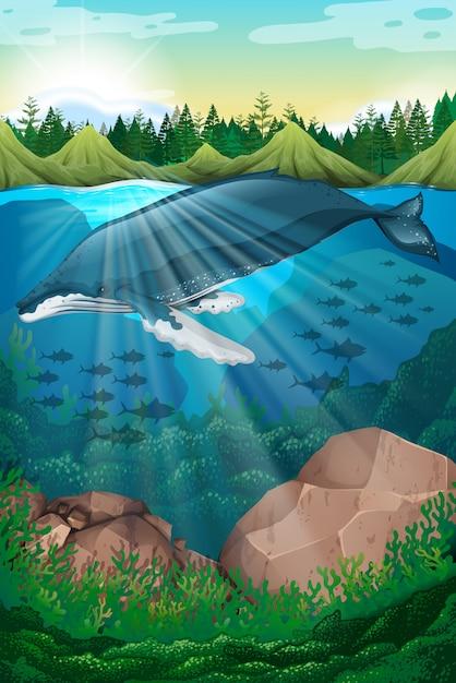 Природа сцена с китом под морем Бесплатные векторы