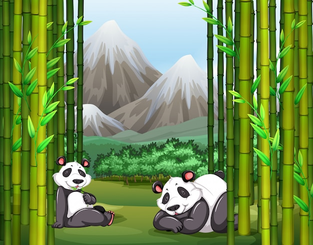 パンダと竹林 無料ベクター