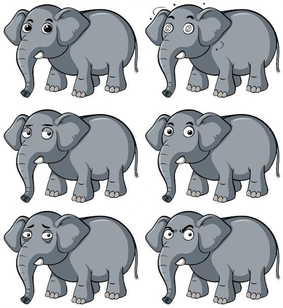 Дикий слон с разным выражением лица Бесплатные векторы
