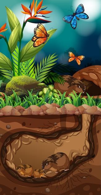 地下の生活と蝶のいるランドスケープデザイン 無料ベクター