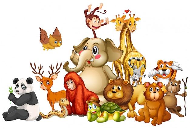 Многие животные на белом Premium векторы